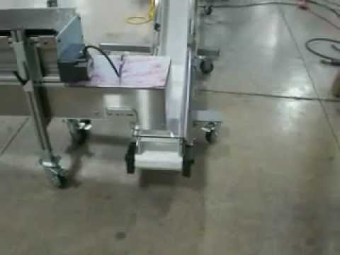 Bag Filling System By Weight with In-feed Conveyor