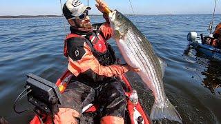 EPIC JUMBO STRIPER FISHING (Part 1)
