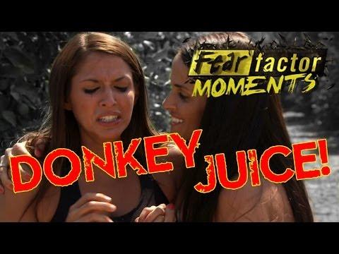 Fear Factor Moments   Donkey Juice