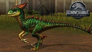 Velociraptor Tiến Hóa Dạng Cuối LV 40 | Jurassic World Công Viên Khủng Long