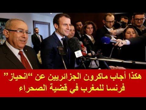 """هكذا أجاب ماكرون الجزائريين عن """"انحياز"""" فرنسا للمغرب في قضية الصحراء"""