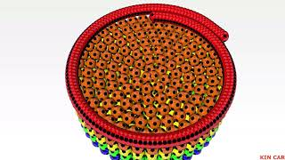 Learn colors with balls to circle | Học màu sắc cho bé