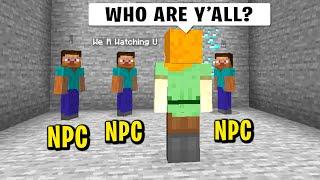 Trolling my new minecraft friend with NPC's...
