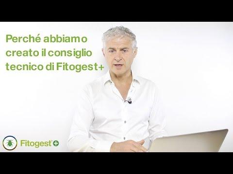 Perché abbiamo creato il consiglio tecnico di Fitogest+