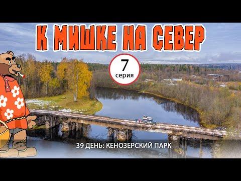 Кенозерский парк - Кучепалда - Каргополь. Автопутешествие К Мишке на Север - 7 серия. Русский Север.