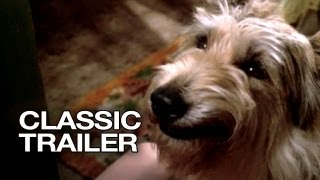Because of Winn-Dixie (2005) Official Trailer #1 - Jeff Daniels Movie HD