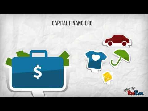 ¿Qué es el capital social?