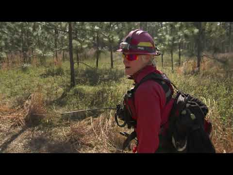 screenshot of youtube video titled Fire Management Crew | Cultivating the Wild
