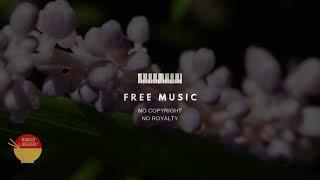 Mature Sounds - Jingle Punks   Royalty Free Music   NCS   No Copyright Music