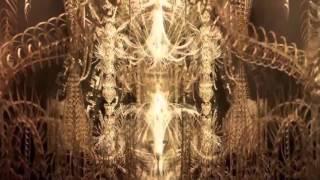 Liquid Bloom - Shaman's Eye - Roots of the Earth