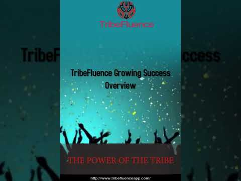 TribeFluence Growing Success Overview