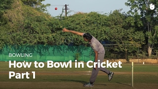 how to bowl in cricket play 3d