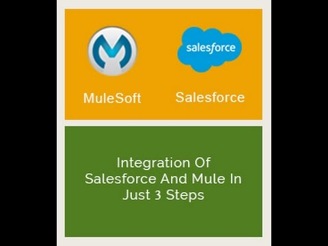 [Webinar] Integration Of Salesforce And Mule In Just 3 Steps