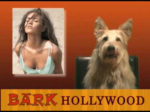 Bark Hollywood - Episode 5