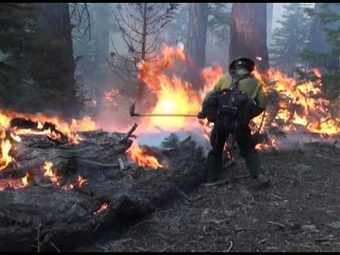 Wildland Fire Recruiting Video - YouTube