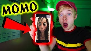 THE MOMO CHALLENGE (Hoax or Real?) | 3AM CHALLENGE
