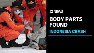 Body parts, debris found in ocean after plane crash off Indonesia | ABC News