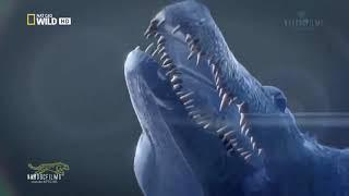 Thế giới động vật - Những trận chiến sinh tử  HD - thuyết minh