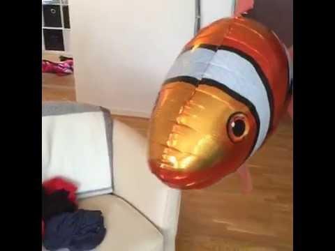 Airswimmers från Glasskalas-Man kan ha roligt med Helium!