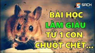 Bài Học Làm Giàu Từ 1 Con Chuột Chết Vô Cùng Thấm Thía!