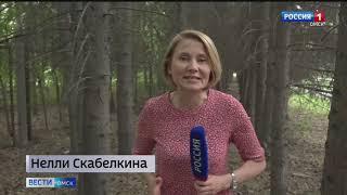 «Вести Омск», итоги дня от 17 мая 2021 года