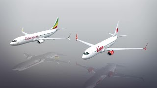 Design issues with the Boeing 737 Max 8