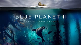BBC'S Blue Planet II Live In Concert