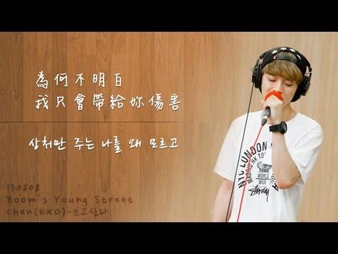 【韓繁中字】130808 Chen (of EXO) - 보고싶다 ( 想你 / I Miss You )