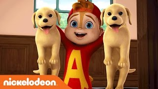 ALVINNN!!! and the Chipmunks | A Song For Every Situation | Nick