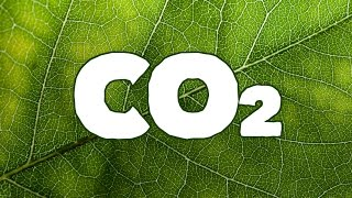 Using CO2 in a Sealed Grow Room (Opticlimate)