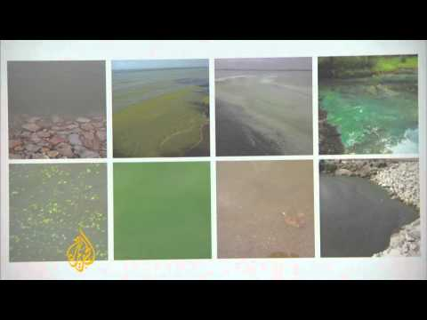 US Lake Erie suffocated by toxic algae