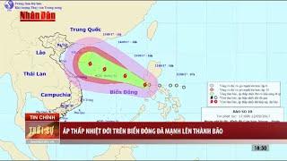 Tin Thời Sự Hôm nay (18h30 - 12/9/2017): Áp Thấp Nhiệt Đới Trên Biển Đông Đã Mạnh Thành Bão
