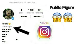 make-your-instagram-profile-public-figure-watch-how-many-people-visiting-your-profile.jpg