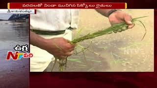 Farmers Face Problems With Heavy Rains | Damaged Paddy Crops | Huge Loss to Farmers | NTV