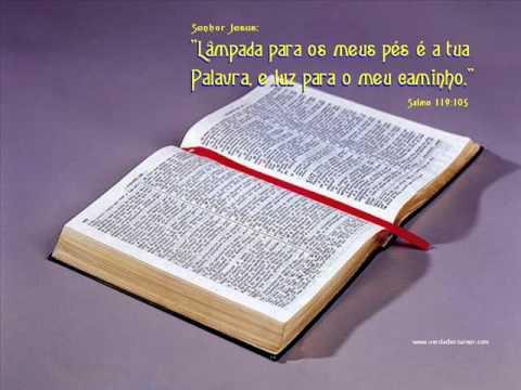 Baixar SALMOS 19 AO 24 LEITURA DA BÍBLIA POR NEUZA BALDINI.wmv