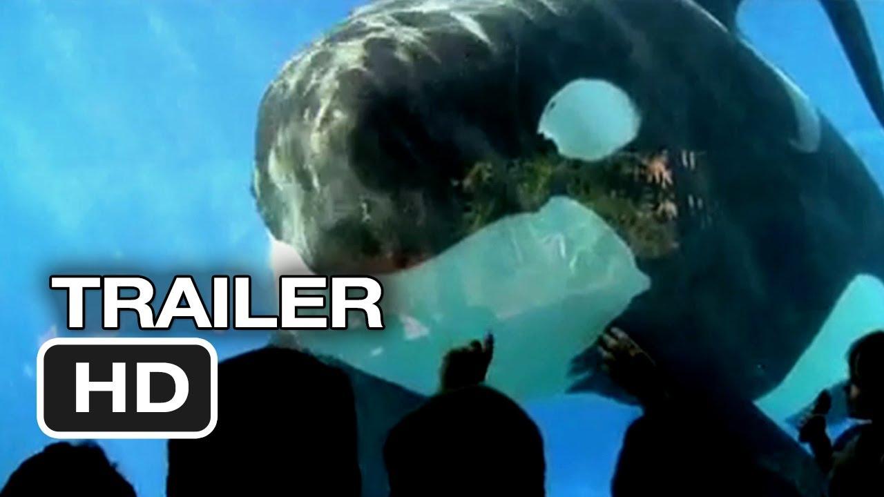 Film Blackfish