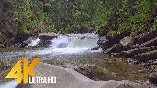 Carpathian's Water, Ukraine - 4K Nature Relax Video - 3 Hours Soothing Water Sounds for Relaxation