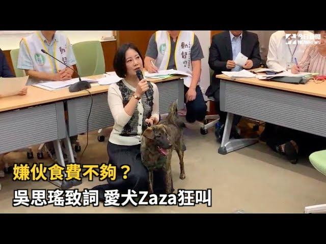 影/吳思瑤帶毛孩出席記者會 愛犬Zaza不給面子狂叫