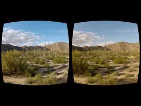 Oculus Rift - Cactus