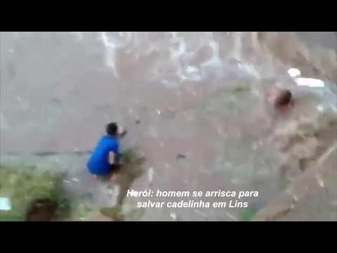 Homem se arrisca para salvar cadelinha