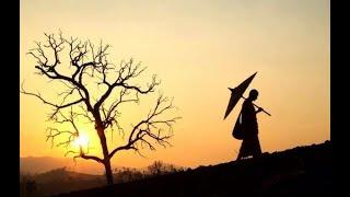1037: HAI LOẠI KHỔ (ĐĐ Thích Thiện Tuệ Thuyết Giảng Hay)