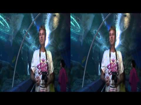 Aquarium Pattaya 3D Underwater World Thailand 2013 FULL HD