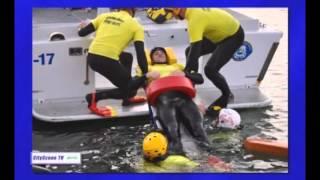 VCFD Ocean Rescue