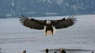 El Condor Pasa - George Zamfir