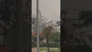 Sylmar Fire Black Smoke Down the Street