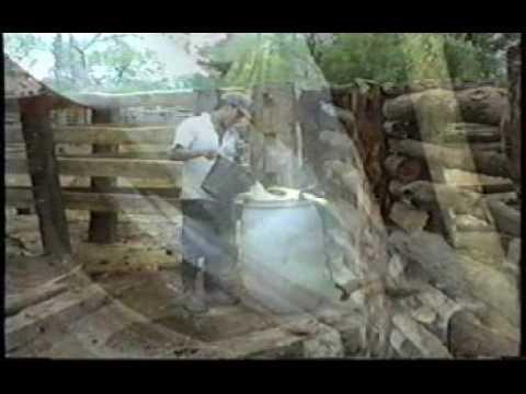 Dalmiro Cuellar - Tiempo de lechada