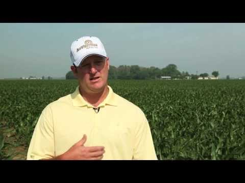 AgVenture - Experts in the Field