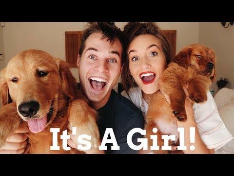 WE GOT ANOTHER PUPPY!!!