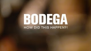 Bodega - How Did This Happen?! (Live at The Current)