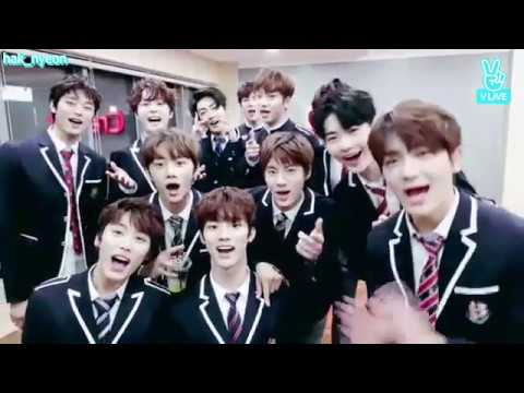 THE BOYZ VLIVE CUTE AND FUNNY MOMENTS